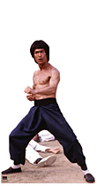 Bruce Lee - Fighting Stance